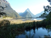 Fiordlands - bay scenery 8