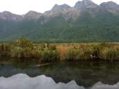 Fiordlands - scenery 2