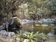 Hong Kong - Kowloon walled city park pond