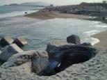 Hualien - seaside 3