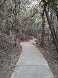 Kenting - forest recreation area path 2