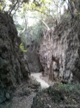 Kenting - forest recreation area path 4