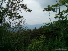 Kenting - forest recreation area view 2
