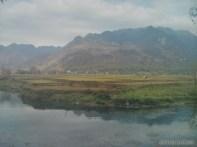 Mai Chau - rice fields 4