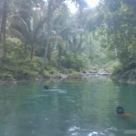 Moalboal - Kawasan water falls hike 1