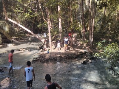 Moalboal - Kawasan water falls path 1