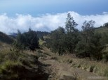 Mount Rinjani - first day scenery 4