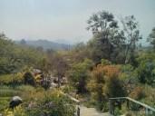 Pai - Pai treehouse 2