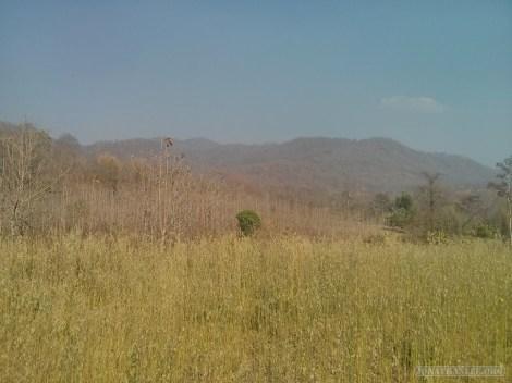 Pai - biking around scenery 4
