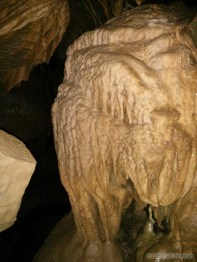 Pang Mapha - caving trip fossil cave 6