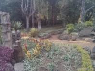 Pyin U Lwin - National Kandawgyi Gardens 11