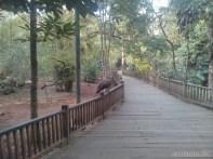 Pyin U Lwin - National Kandawgyi Gardens aviary 2