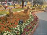 Saigon during Tet - flower street 16