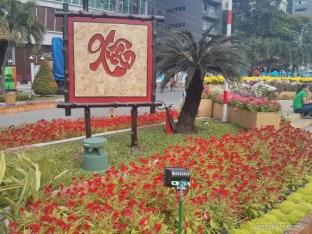 Saigon during Tet - flower street 20