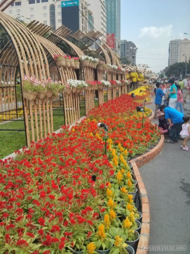 Saigon during Tet - flower street 4