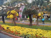 Saigon during Tet - flower street 5