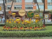 Saigon during Tet - flower street 6