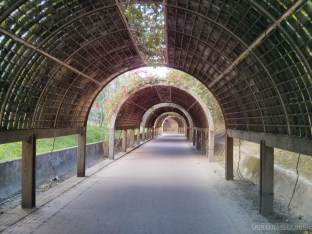 Taitung - forest park covered trail