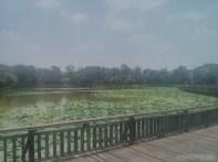 Yangon - Kandawgyi lake park 3