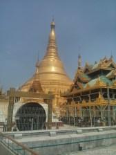 Yangon - Shwedagon pagoda 33