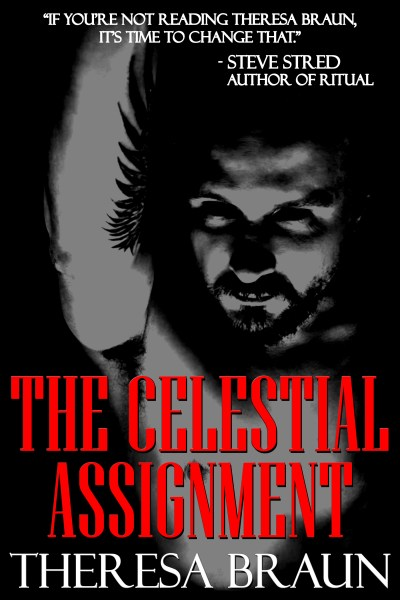 The Celestial Assignment Cover