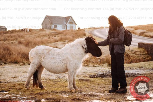 Beautiful, delicate creatures, and diminutive in stature (the Pony)