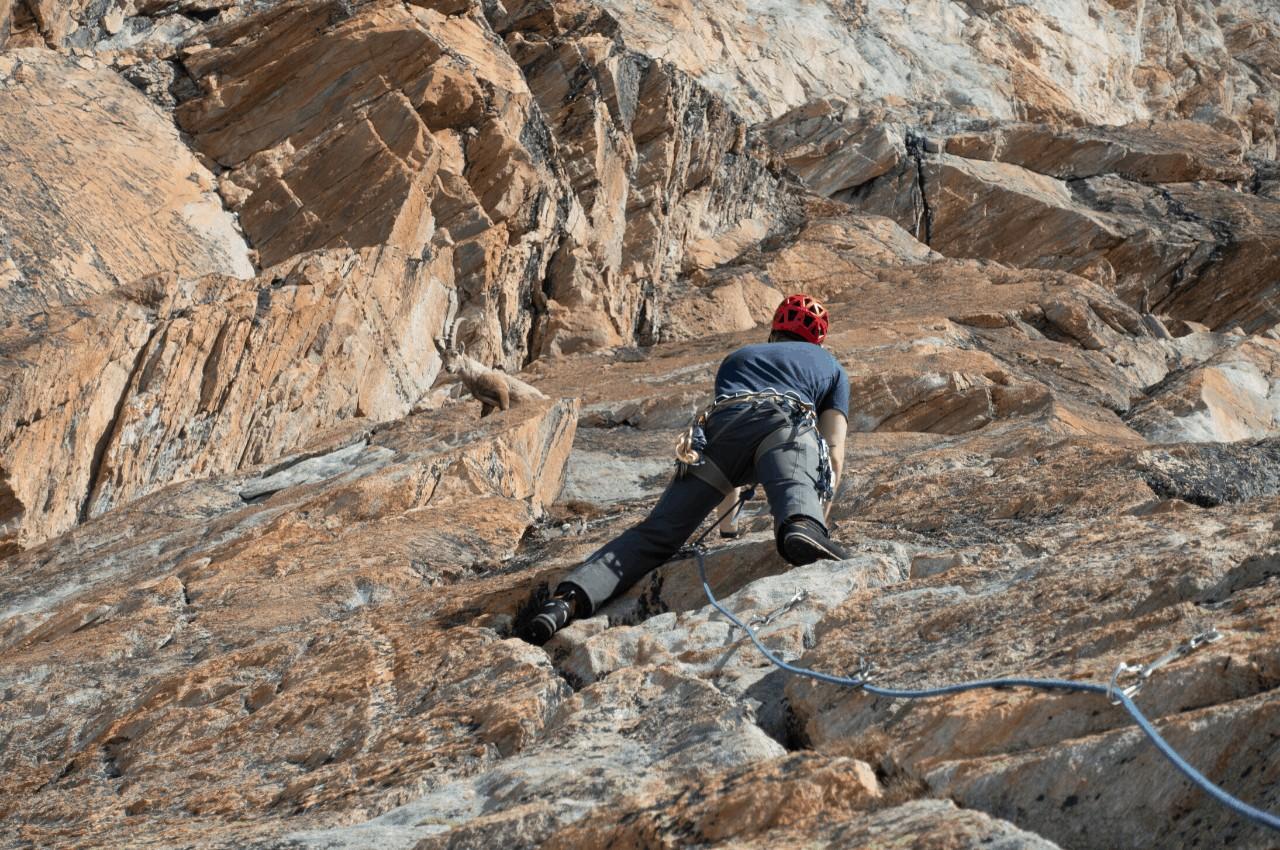 Meine Felskletternausrüstung Titelbild - Meine Felskletterausrüstung