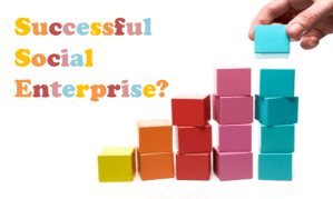 The Five Steps to Establishing Sustained and Successful Social Enterprise
