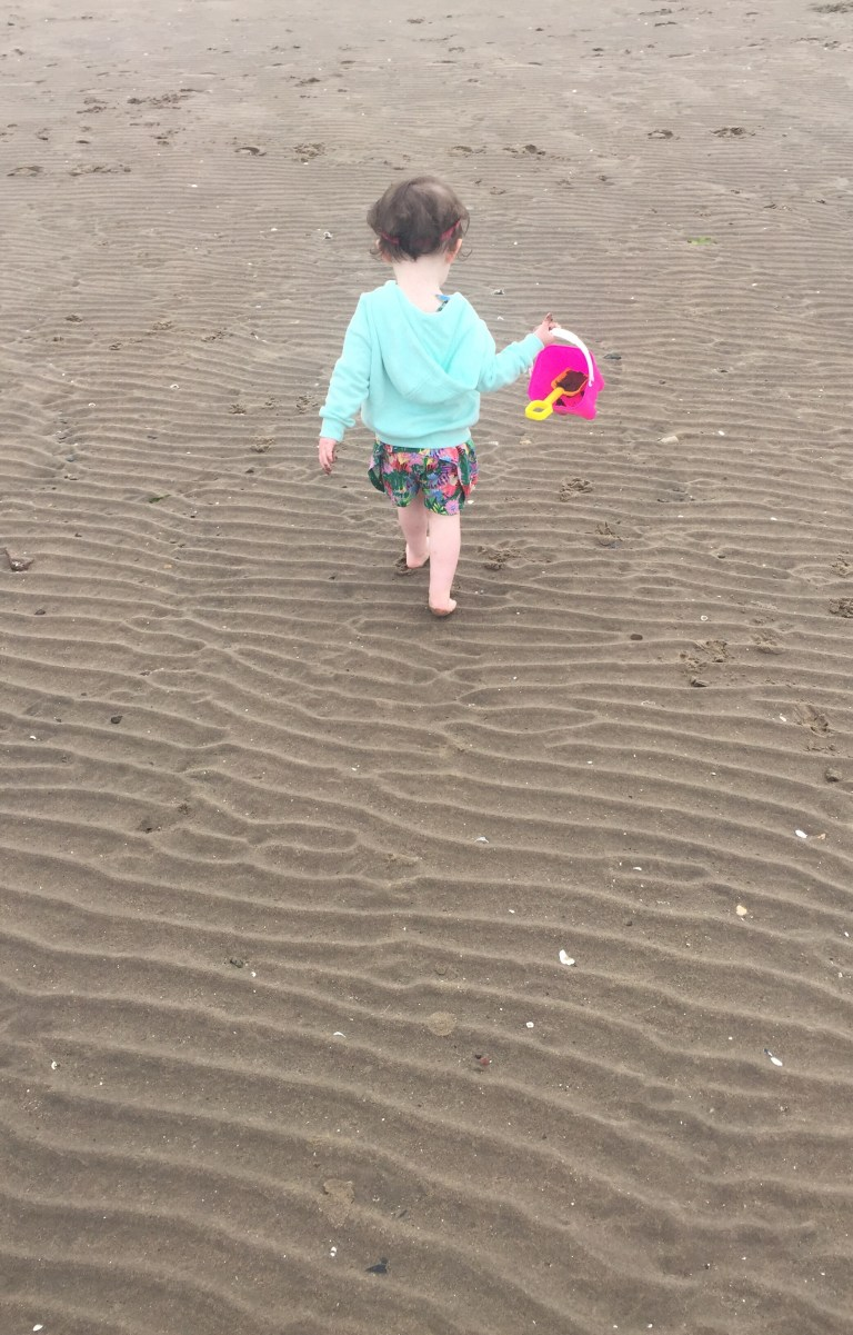 Read more about the article Ayr beach
