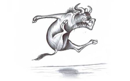 wildebeast.jpg?fit=800%2C500&ssl=1