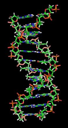 DNA_orbit_animated_static_thumb