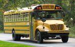 440px-school bus