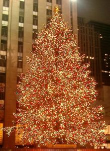 640px-Rockefeller_Center_christmas_tree_cropped