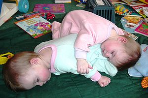 300px-Being_a_twin_means_you_always_have_a_pillow_or_blanket_handy