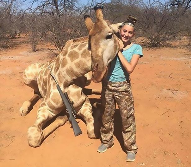 Giraffe-girl
