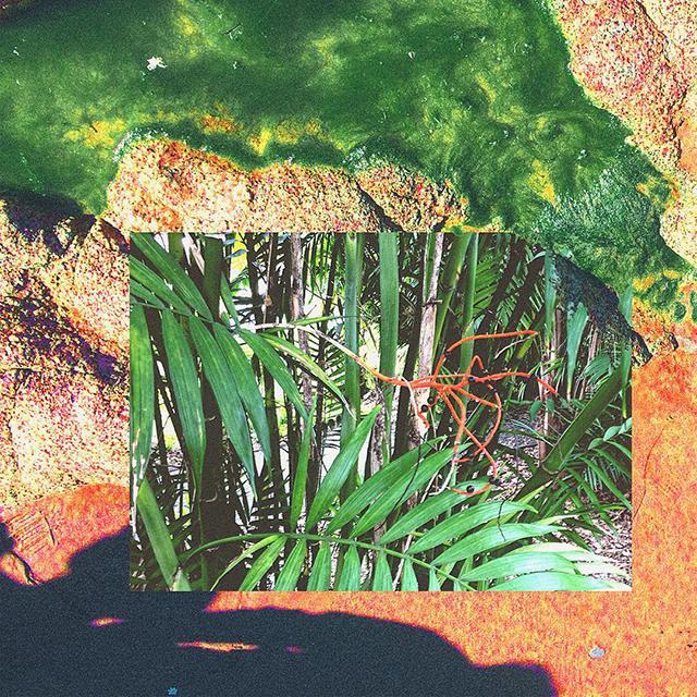03_collage_web-005