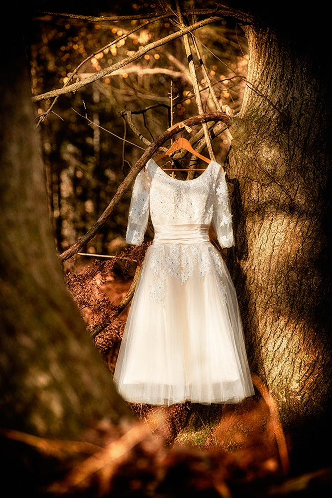 Pretty champagne coloured wedding dress hanging in the Autumn woodland