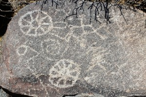 Saguaro Petroglyphs