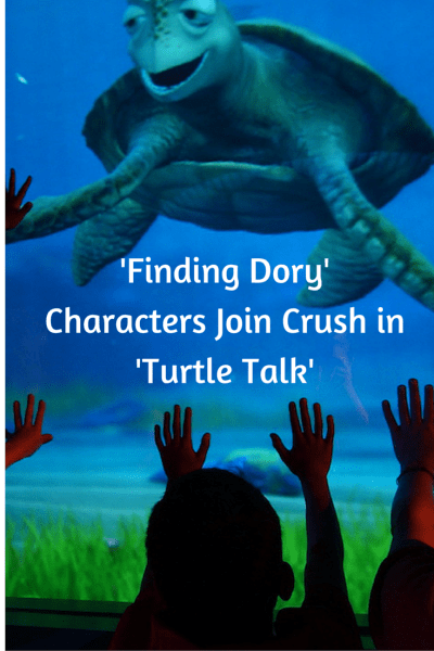'Finding Dory' Characters Join Crush in 'Turtle Talk'