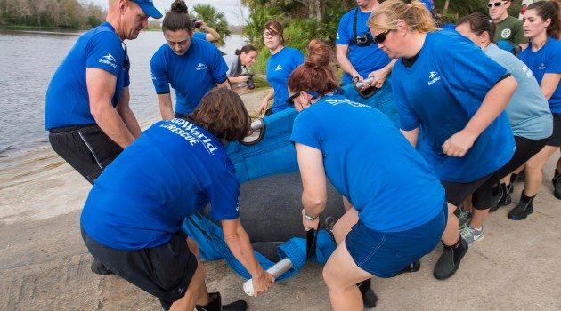 SeaWorld Orlando Returns Rehabilitated Manatee to the Wild