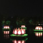 Rivers of Light at Disney's Animal Kingdom Video & Review