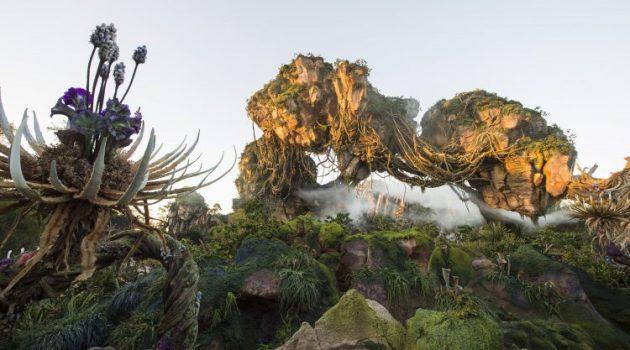 Pandora – The World of Avatar Q & A