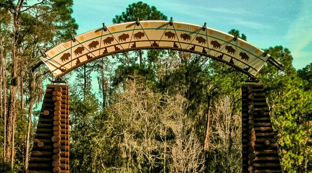 Wilderness Lodge Arch