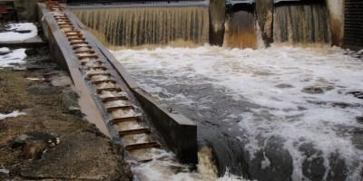 Elm St Dam, March 2015