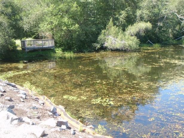 The impoundment at Elm Street Dam.
