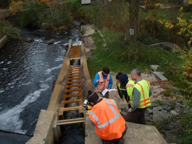 Smith College studies the Elm Street dam, October 2015