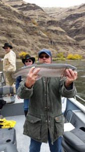 snake river steelhead