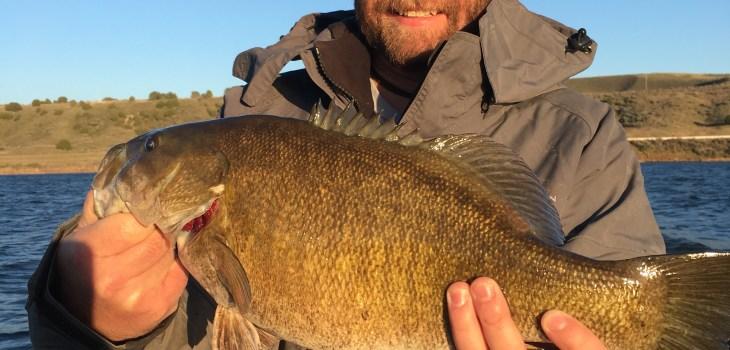 American Falls Smallmouth Bass