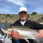 American Falls Rainbow Trout