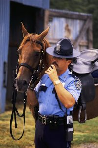 Mounted Police Officer and Horse